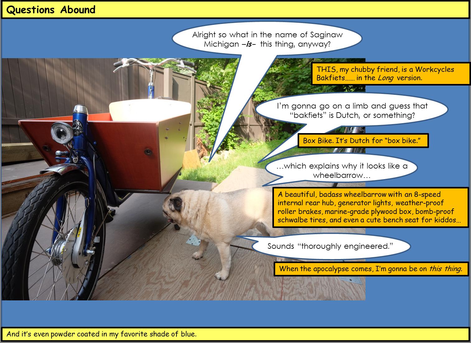 Workcycles | Pug Velo